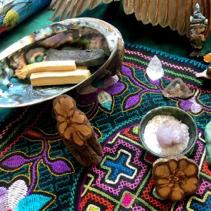 shamanic healing illinois chicago