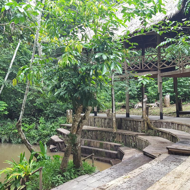 ayahuasca retreat peru 2021